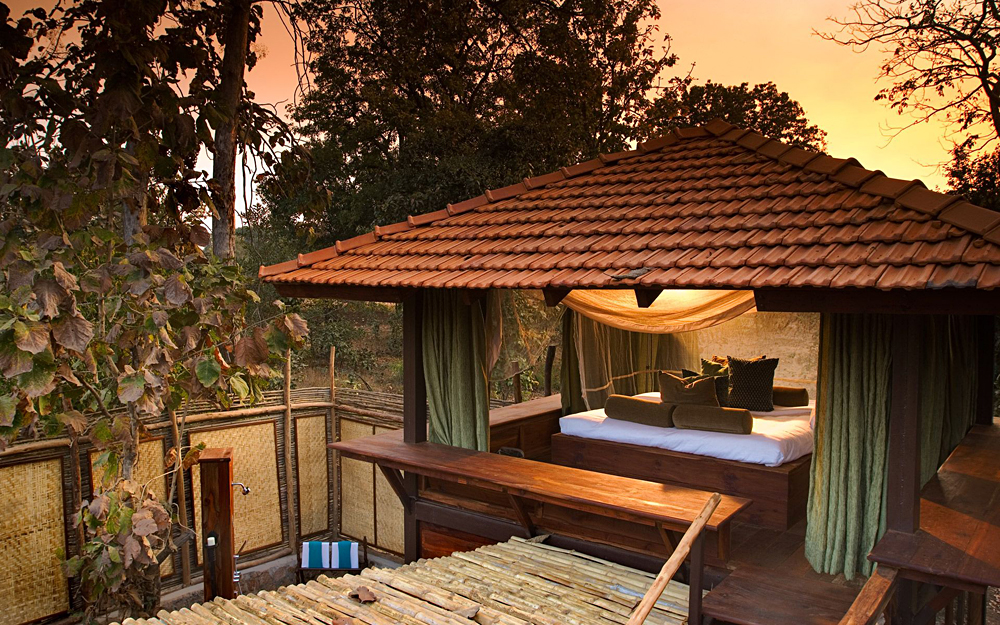 Taj Hotel Safari Lodge - Suite, India