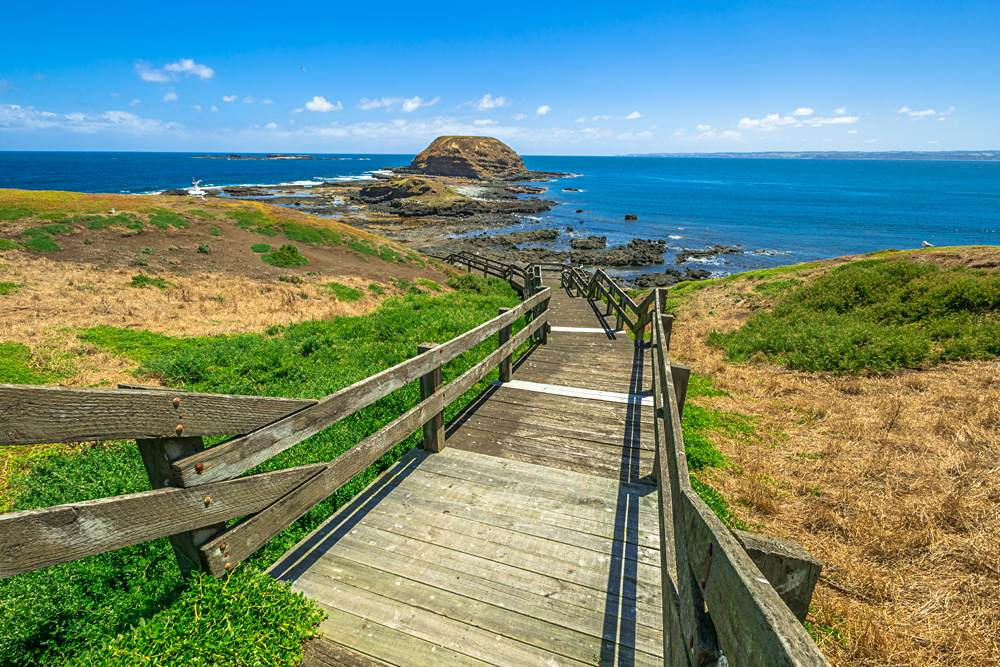 The Nobbies at western tip of Phillip Island, Victoria, Australia