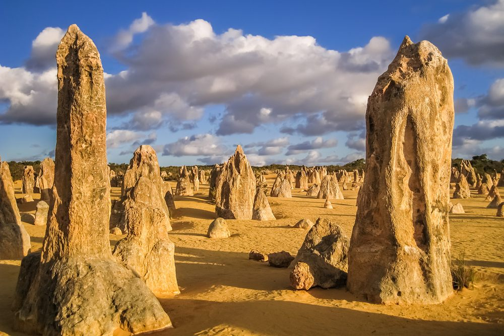 The Pinnacles in late afternoon light, Nambung National Park, Western Australia