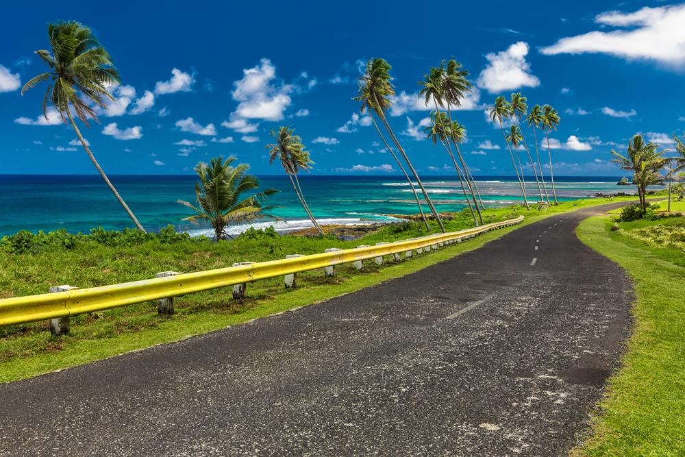 Coastal road lined with palm trees, overlooking tropical ocean, Samoa Islands