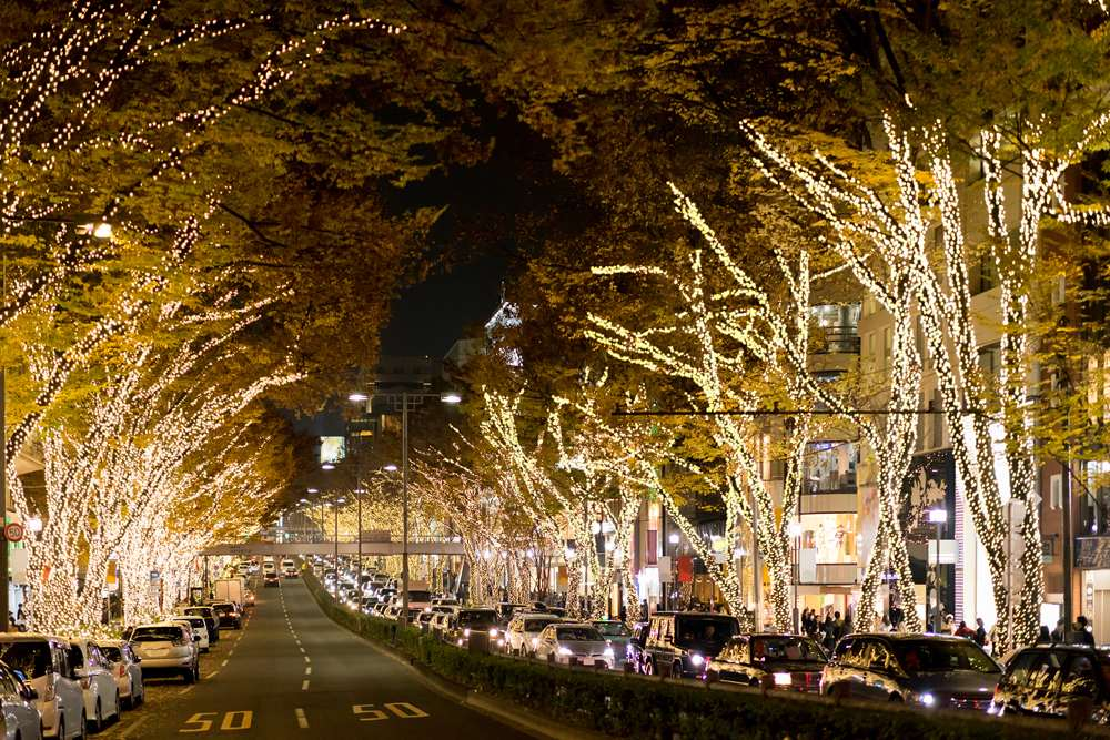 Omotesando Street lit up at night in Harajuku, Tokyo, Japan