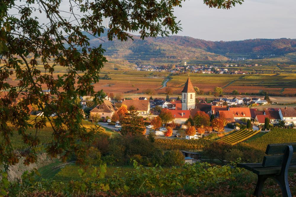 Rolling Hills and Medieval village with church in the Black Forest, Germany