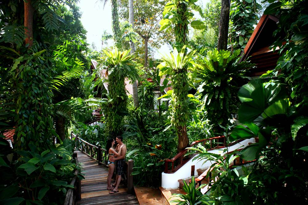 Thailand Tourism - Romantic Couple at Lush, Tropical Resort, Thailand