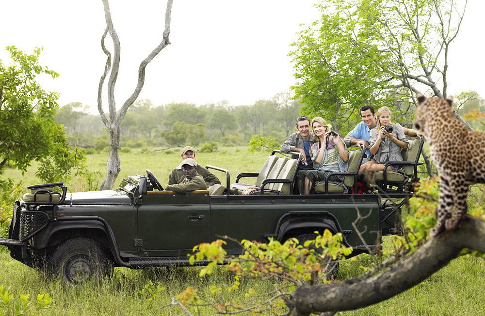 Tourists in jeep looking at cheetah lying on log, Kruger National Park, South Africa
