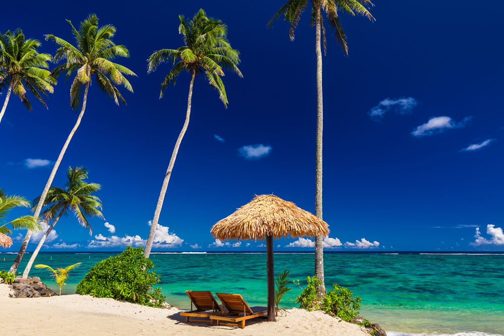 Two beach chairs under umbrella with palm trees, Samoa Islands