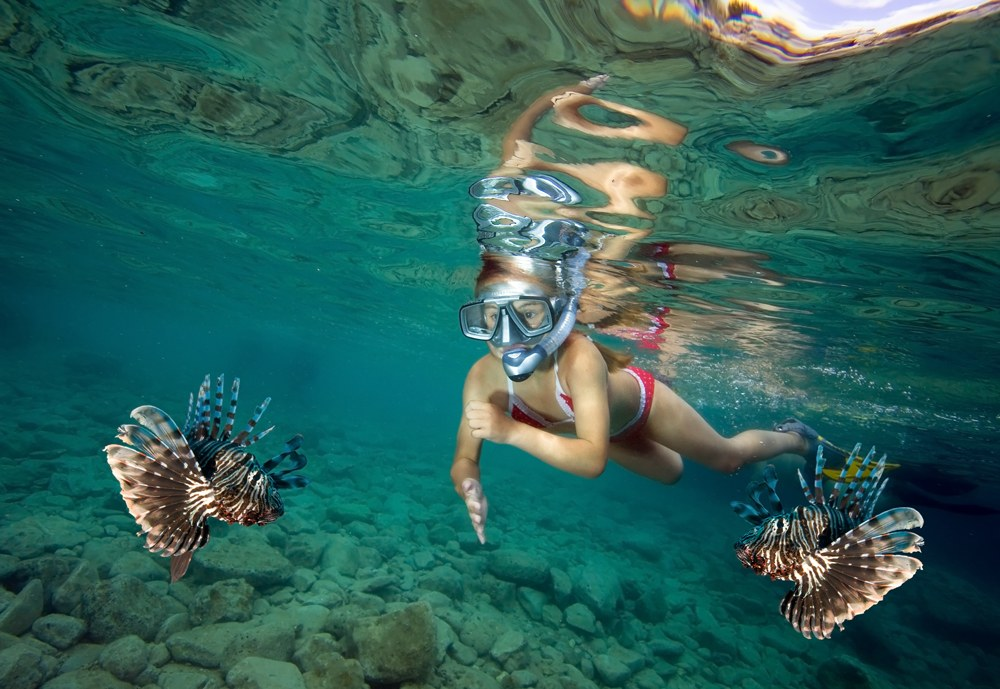 Young girl snorkeling with lionfish, Fiji