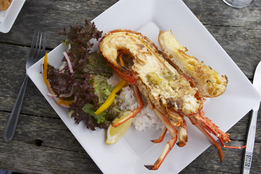 Crayfish lunch from roadside caravan, Kaikoura, New Zealand