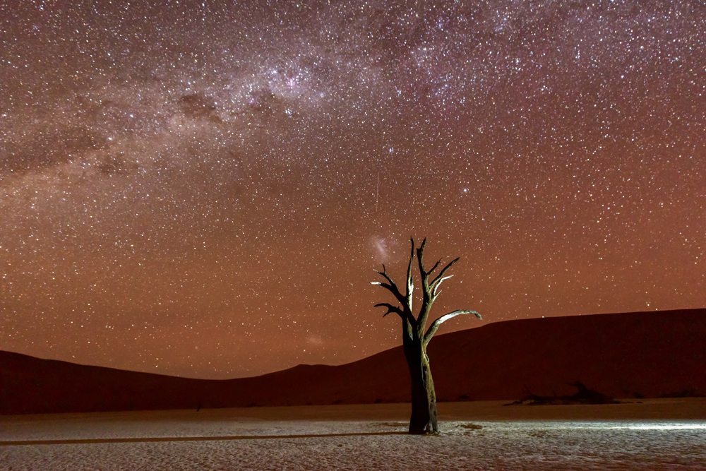 Dead Vlei at dusk in the southern part of the Namib Desert, Namibia