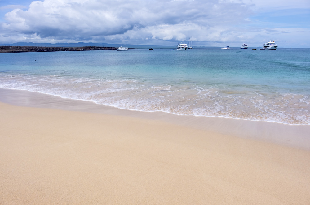 Beautiful beach on Baltra Island, Galapagos Islands, Ecuador