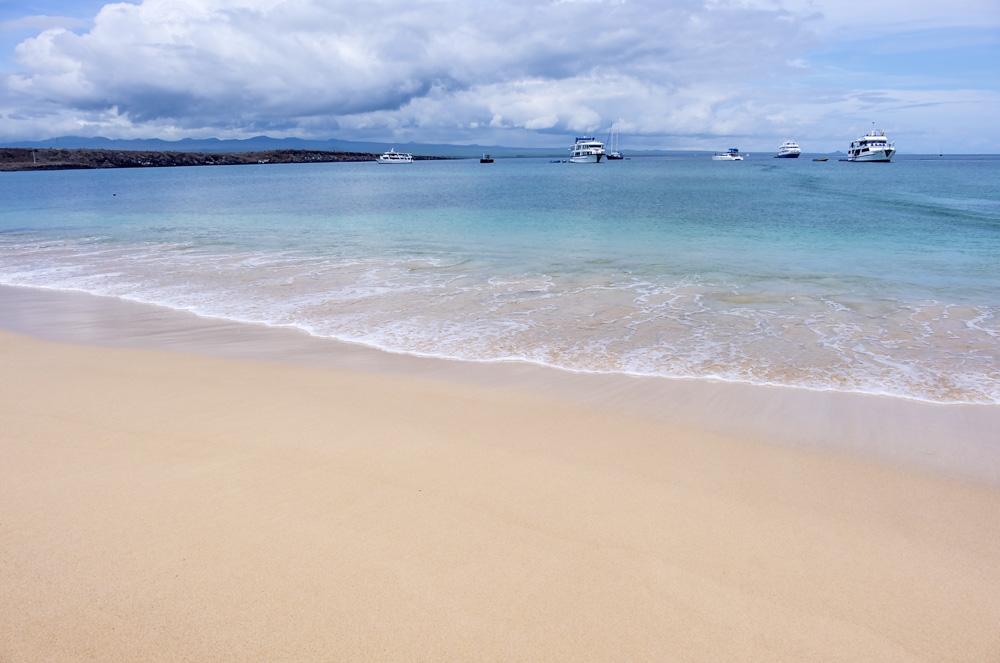 Beautiful beach on Baltra Island, Galapagos Islands, Ecuador
