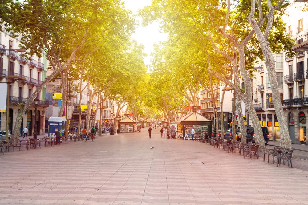 La Rambla street in the early morning, Barcelona, Spain