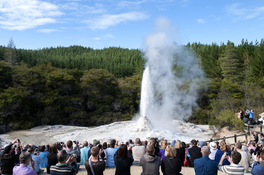Tourists watching erupting Lady Knox Geyser in Wai-o-Tapu, Rotorua, New Zealand