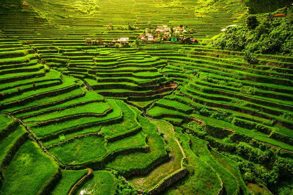 Banaue Rice Terraces in northern Luzon, Philippines