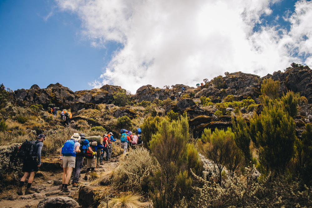 Hiking on Mt Kilimanjaro, Tanzania