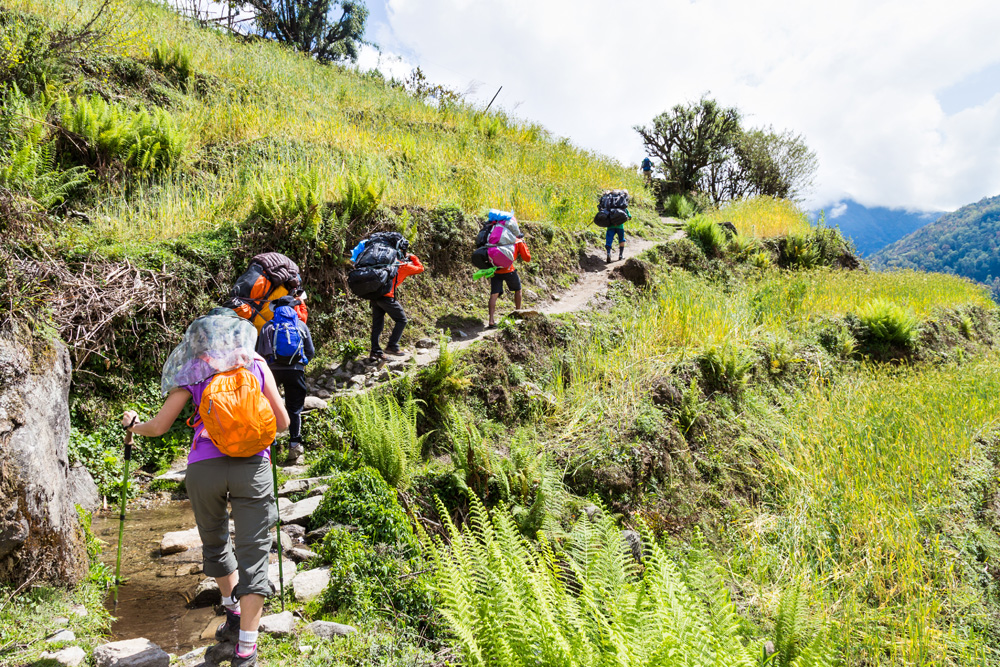 Hiking through a scenic terrace plantation in Nepal
