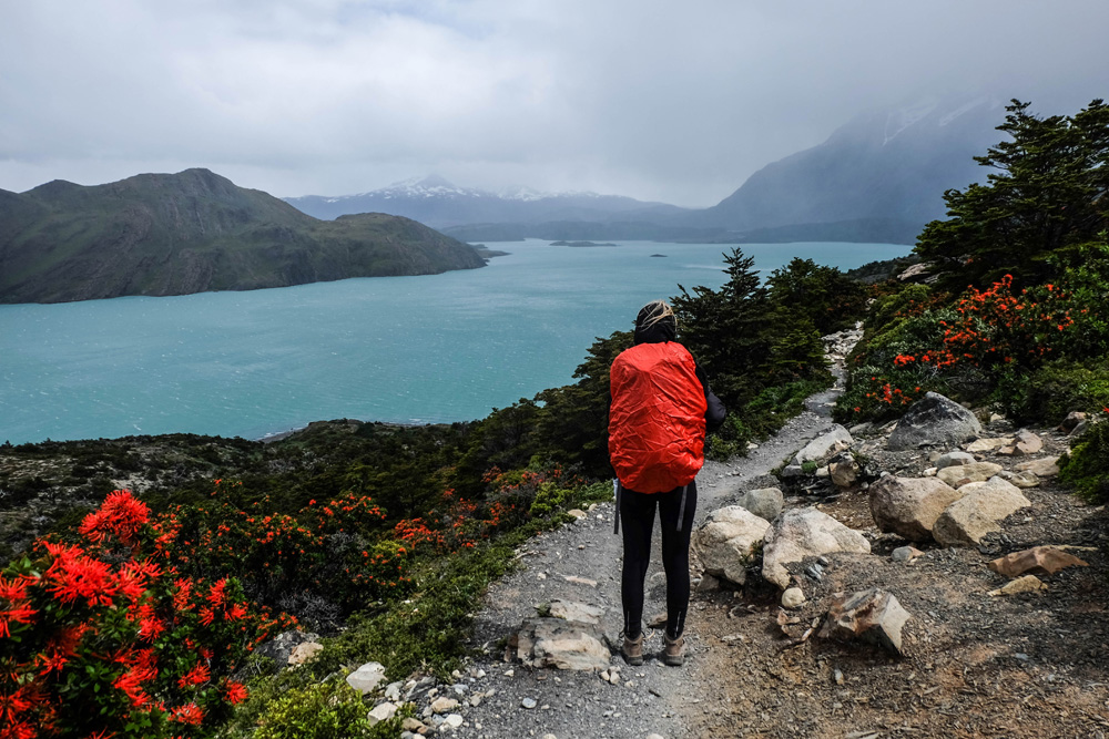 Viewing Nordenskjold Lake in Torres del Paine National Park, Patagonia, Chile