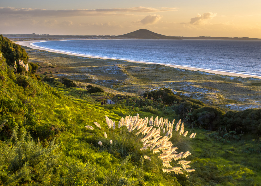 Sunset over Doubtless Bay with Rangiputa Volcano in background, North Island, New Zealand