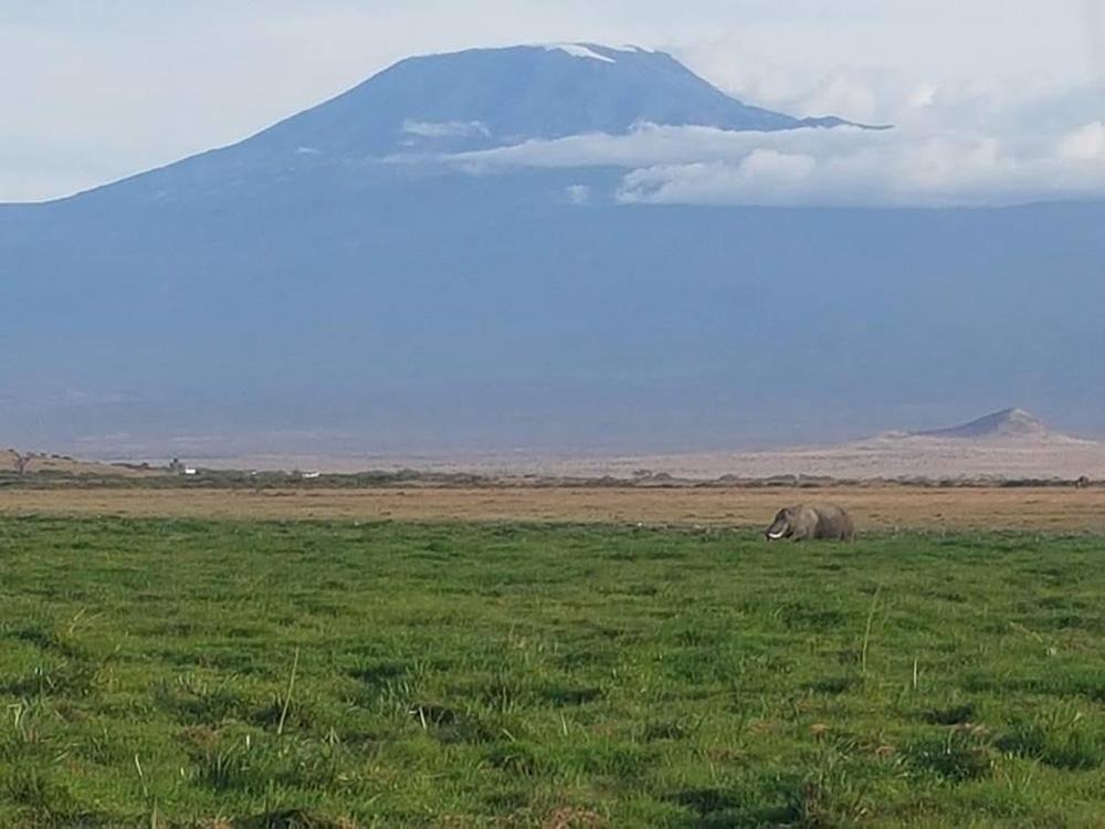 Christian Baines - Iconic Kilimanjaro at Amboseli, Kenya