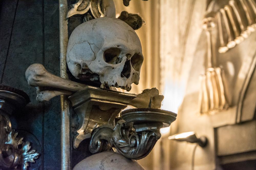 Skull at Sedlec Ossuary, Kutna Hora, Czech Republic