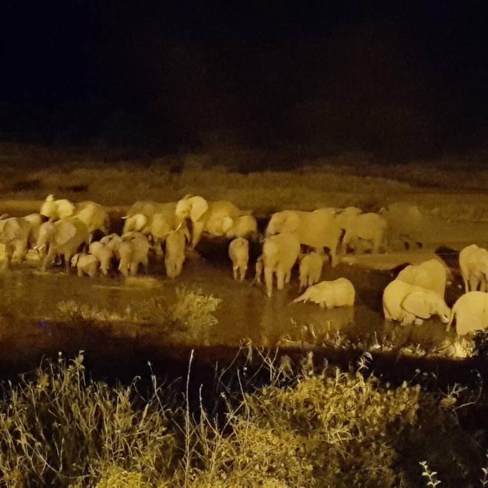Christian Baines - An elephant pool party greets the night, Tsavo, Kenya P1