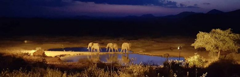 Christian Baines - The colours of sunset in Tsavo, Kenya P2