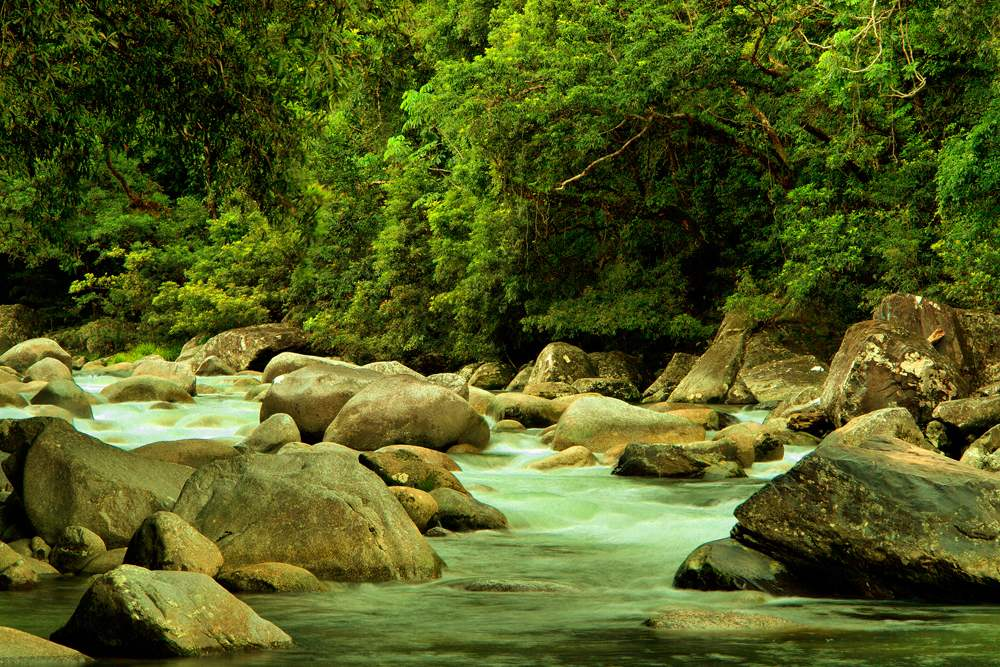 Mossman River at Daintree National Park, Queensland, Australia