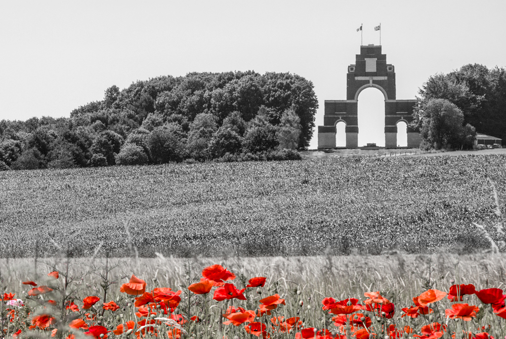 Poppy field in front of World War One's Commonwealth Memorial in Thiepval, France