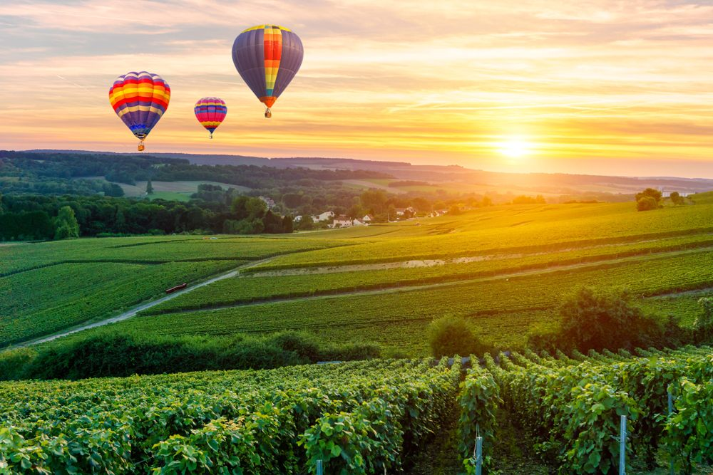 Colourful hot air balloons flying over Champagne vineyards at sunset, Reims, France