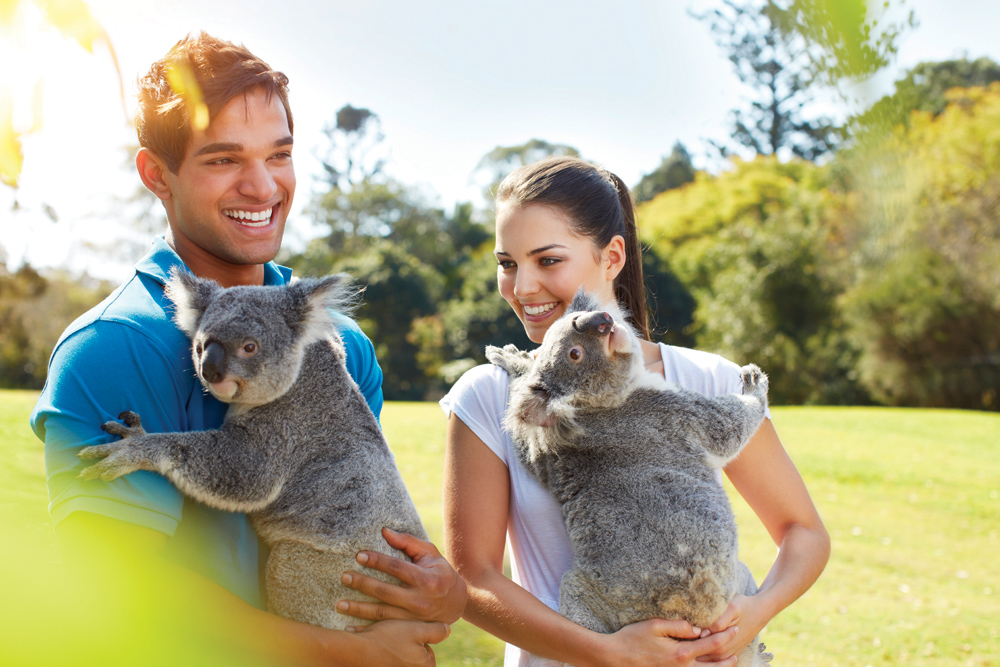 Lone Pine Koala Sanctuary in Brisbane, Queensland, Australia