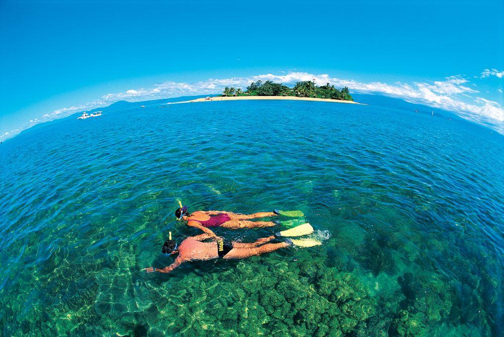 Snorkelling in the Low Isles, Great Barrier Reef, Queensland, Australia