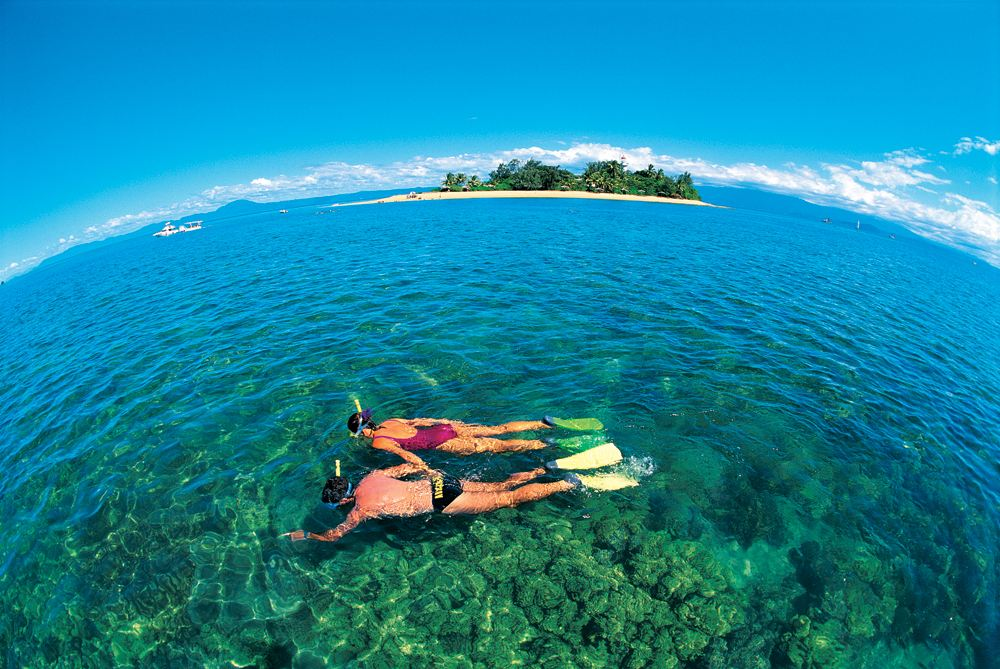 Snorkelling in the Low Isles, Great Barrier Reef, Queensland, Australia