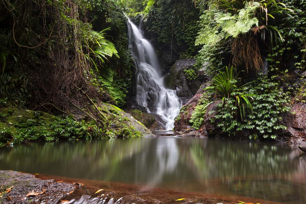 Elabana Falls in Lamington National Park in the Gold Coast hinterlands, Australia