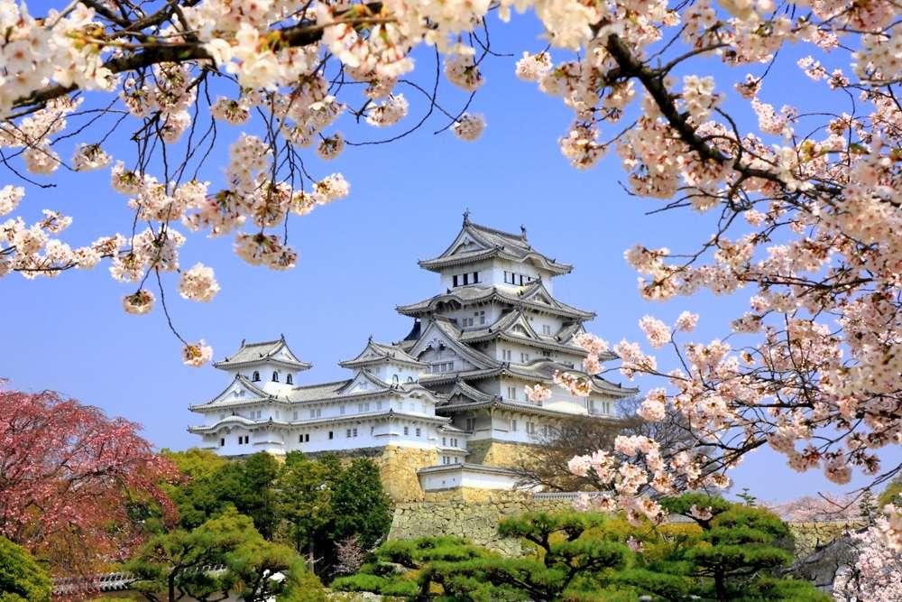 Himeji-jo Castle in spring with cherry blossoms, Himeji, Japan