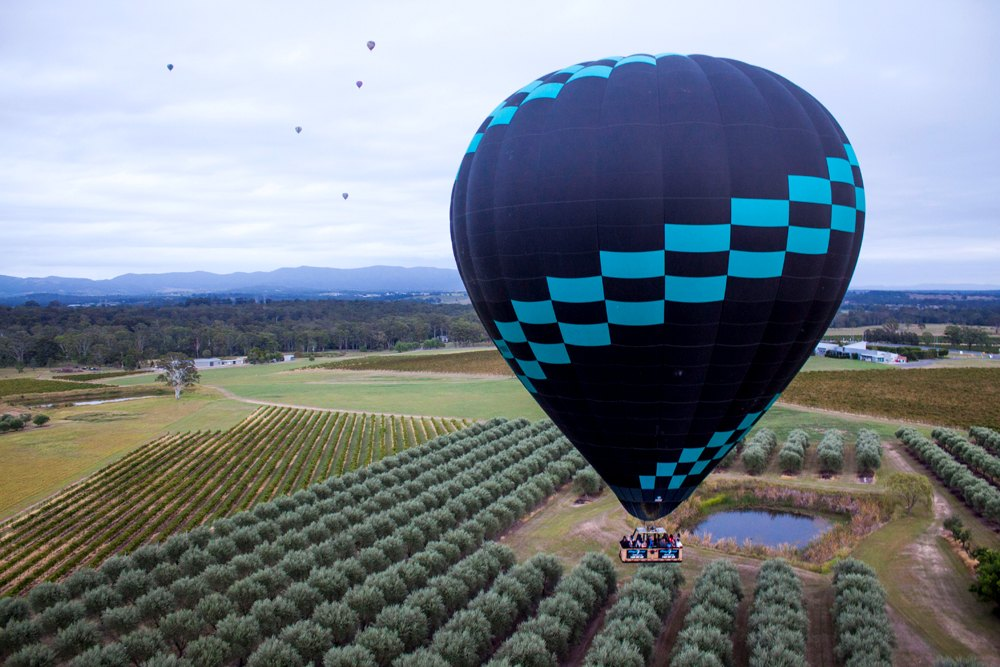 Hot air ballon over vineyard in Hunter Valley, New South Wales, Australia