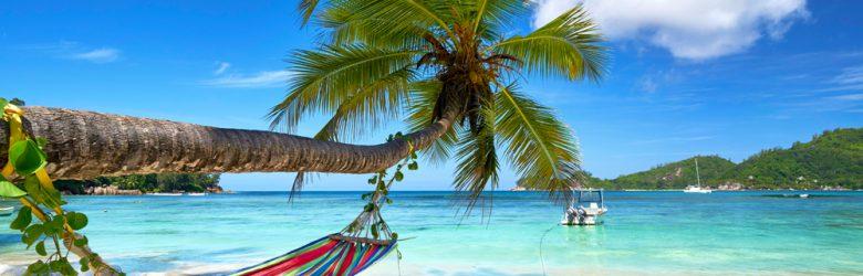 Romantic cozy hammock in the shadow of coconut palm tree at tropical paradise ocean beach, Seychelles