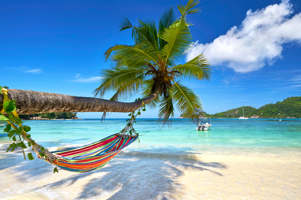 Romantic cozy hammock in the shadow of coconut palm tree at tropical paradise ocean beach, Seychelles