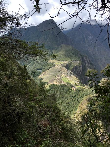 Aren Bergstrom - Machu Picchu Peeks Out through the Trees, Huayna Picchu, Peru