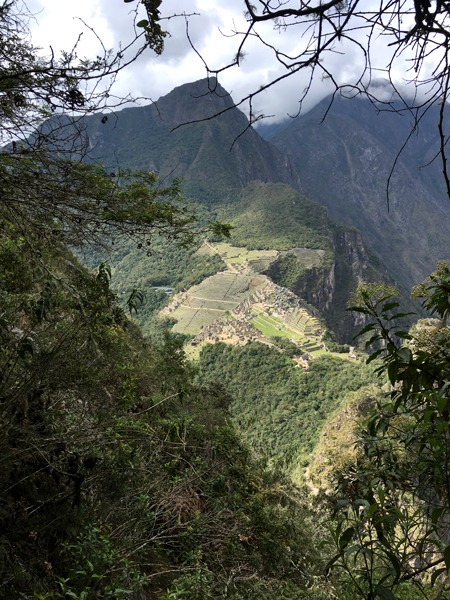 Aren Bergstrom - Machu Picchu Peeks Out through the Trees, Huayna Picchu, Peru