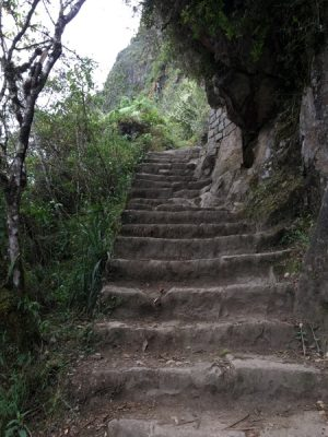 Aren Bergstrom - Steep Staircase of Huayna Picchu, Peru