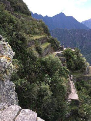 Aren Bergstrom - Terraces on the Top of Huayna Picchu, Peru
