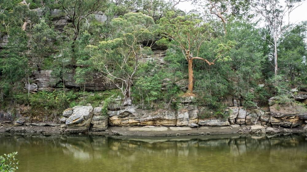 Cockle Creek at Ku-Ring-Gai Chase National Park, NSW, Australia