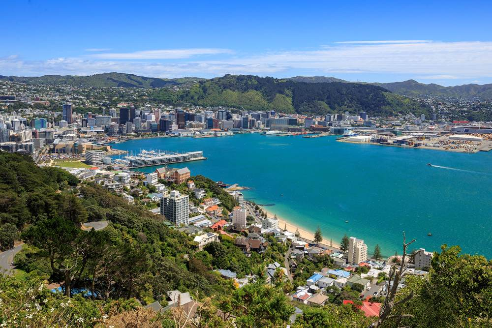 Wellington harbour and central business district downtown, New Zealand