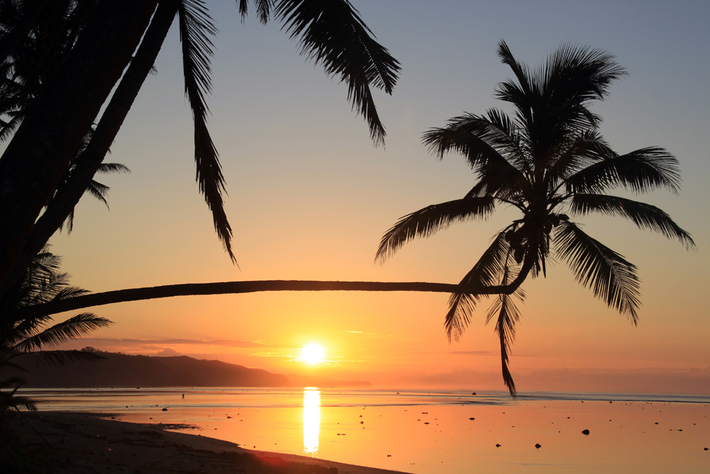 Sunset and palm trees on a beach in Fiji