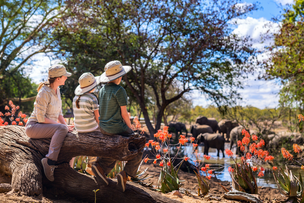 Family of mother and kids on African safari vacation enjoying wildlife viewing at watering hole, Africa