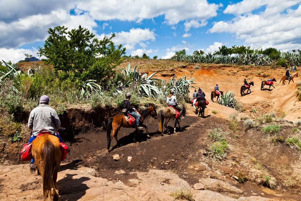 Riding horses in the mountains of Africa