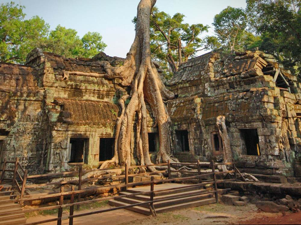 Ta Prohm in Angkor Wat temple complex, Siem Reap, Cambodia