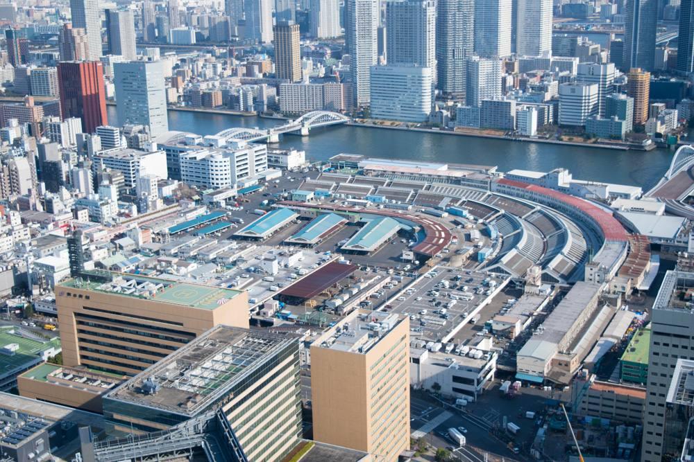 Aerial view of Tsukiji Fish Market, Tokyo, Japan