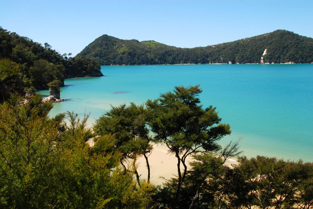Coast track in Abel Tasman National Park, South Island, New Zealand