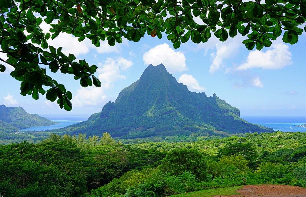Overlooking Cook and Opunohu Bays in Moorea, Islands of Tahiti (French Polynesia)