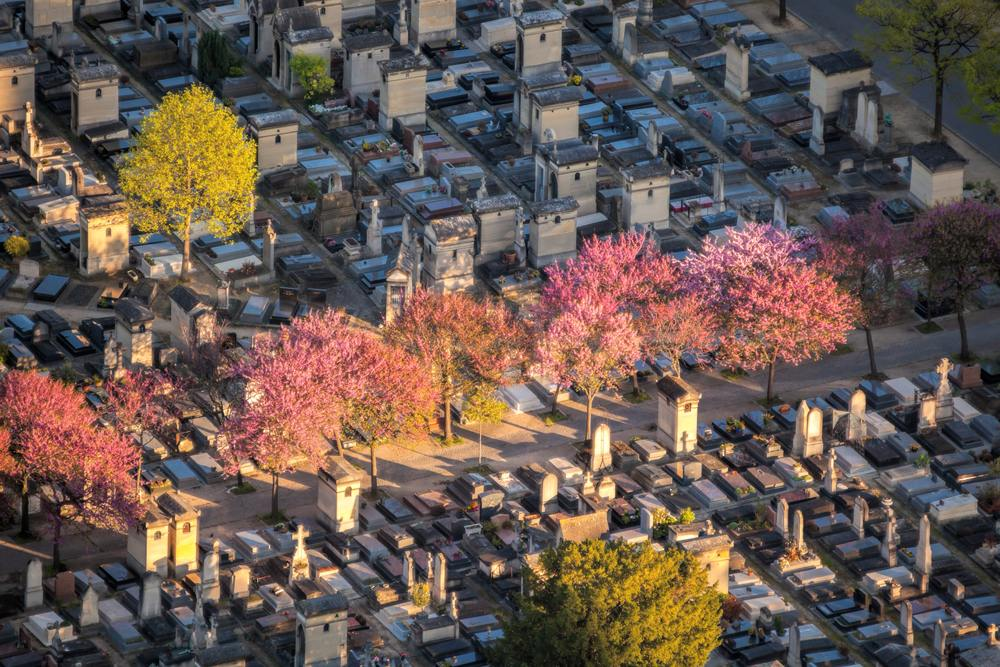Aerial view of Montparnasse Cemetery in spring, Paris, France
